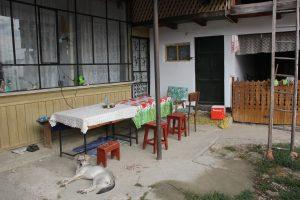House - yard